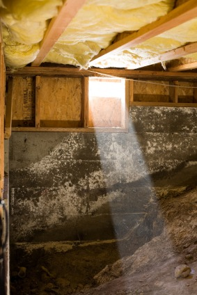 Moldy crawl space