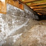 crawl-space-mold-moisture